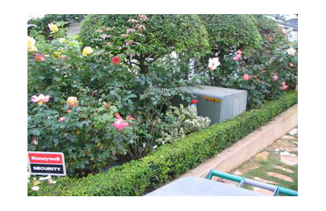 Landscaping prevents safe access to transformer